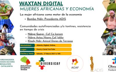 Encuentro digital mujeres africanas y economía